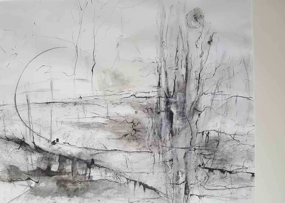 suzette-kunst.nl, zonder titel, inkt en houtskool op papier, 44 x 54
