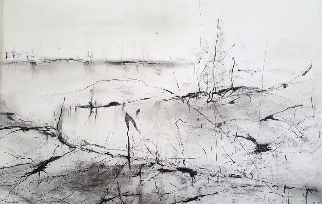 suzette-kunst.nl, zonder titel, inkt en houtskool op papier, 27 x 43